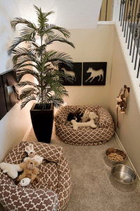 Dog Beds in Small Space