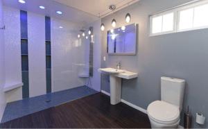 houzz.com- accessible bathroom shower